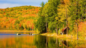 autumn trees lakeside vermont